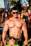 Scitec Muscle Beach Royalty Free Stock Photos