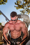 Scitec Muscle Beach Stock Photography