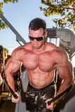 Scitec Muscle Beach Stock Image