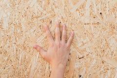 Sciure pressée dans le conseil Main sur le panneau du fond comprimé de sciure de la sciure en bois beige pressée photo stock