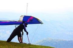 Scivolare di caduta nelle alpi Fotografia Stock