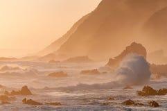 Scène côtière de coucher du soleil de sépia naturelle Photo libre de droits
