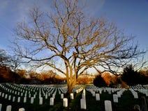 Scène de cimetière national d'Arlington Image libre de droits