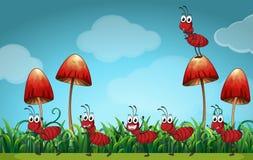 Scène met mieren ter plaatse Royalty-vrije Stock Fotografie