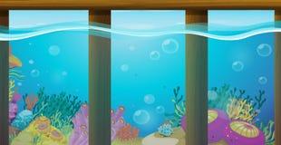 Scène met onderwater en koraalrif Royalty-vrije Stock Foto's