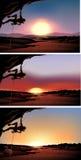 Scène met rotsklimmer bij zonsondergang Royalty-vrije Stock Afbeelding