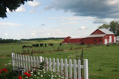 Scène pastorale de ferme Photos stock