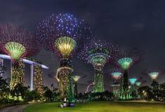 Scène superbe de nuit d'arbres aux jardins de Singapour par la baie Image stock