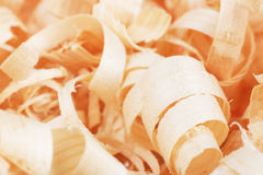 Scobs. Closeup view of wooden shavings Stock Photo