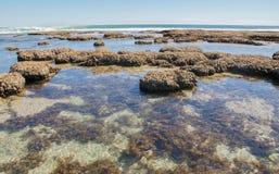Scogliera blu della spiaggia dei fori Immagini Stock