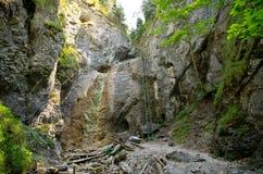 Scogliera con la scala nel paradiso slovacco Fotografia Stock