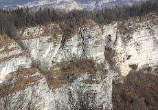 Scogliera con roccia e foresta nelle montagne nell'inverno Fotografia Stock Libera da Diritti
