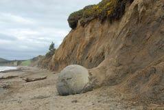 Scogliera del fango indurito del masso di Moeraki, Otago, Nuova Zelanda Fotografia Stock Libera da Diritti