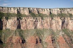 Scogliera del grande canyon Fotografia Stock