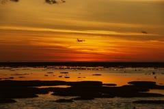 Scogliera del ` s dell'isola dell'airone al tramonto Fotografia Stock Libera da Diritti