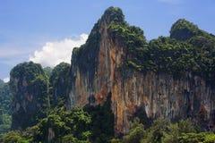 Scogliera della montagna con la foresta Fotografia Stock