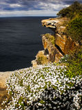 Scogliera della roccia accanto al mare Fotografie Stock Libere da Diritti