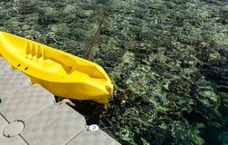 Scogliera di Undrewater sul Mar Rosso con i coralli immagini stock