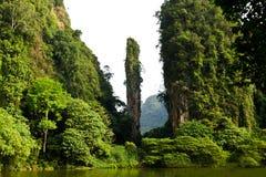 Scogliera e montagna naturali del calcare in Tambun, Ipoh, Malesia Fotografia Stock