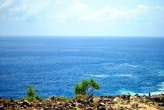 Scogliera ed oceano blu Immagine Stock Libera da Diritti