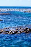 Scogliera esposta a bassa marea fotografie stock libere da diritti