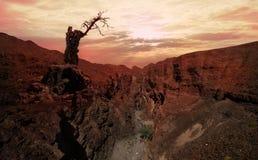 Scogliera tagliente sopra valle profonda contro il tramonto Fotografie Stock Libere da Diritti