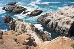 Scogliere cape ed Outcroppings del Bodega Immagine Stock