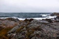 Scogliere del mare Immagine Stock