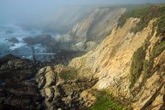 Scogliere della costa del Pacifico in nebbia Fotografia Stock