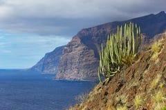 Scogliere di Los Gigantes, Tenerife, isole Canarie Fotografia Stock Libera da Diritti