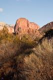 Scogliere drammatiche in canyon di Kolob nell'orario invernale fotografia stock libera da diritti