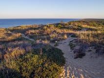 Scogliere nazionali della spiaggia di Cape Cod a Goldenhour fotografia stock
