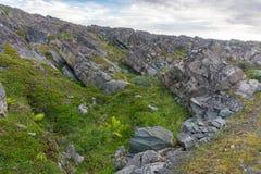 Scogliere rocciose sulla costa del mare di Barents lungo il Varanger Fotografia Stock