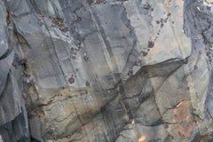 Scogliere rocciose sulla costa del mare di Barents lungo il Varanger Fotografie Stock Libere da Diritti