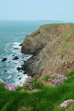 Scogliere sul percorso nazionale di Pembrokeshire (ritratto) Immagine Stock