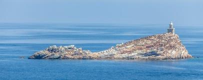 Scoglietto Island Portoferraio Elba Royalty Free Stock Photo