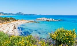 Scoglio di Peppino strand på en solig dag Arkivbild