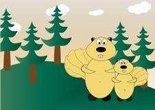 Scoiattoli nella foresta Fotografia Stock