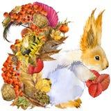 Scoiattolo animale della foresta, fondo variopinto delle foglie della natura di autunno illustrazione vettoriale