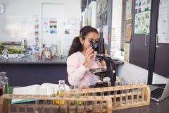 Scolara elementare che esamina tramite il microscopio il laboratorio Fotografie Stock