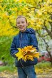 Scolaro con le foglie di acero gialle Fotografie Stock Libere da Diritti