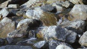 Scoli glaciali dell'acqua attraverso le pietre della montagna video d archivio
