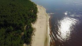 Scolo della Lettonia del fiume di Gauja nel video aereo di vista superiore 4K UHD del fuco del Mar Baltico video d archivio
