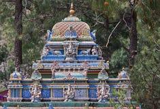 Scolpisca onorare Hanuman, il dio indù della scimmia Fotografie Stock Libere da Diritti