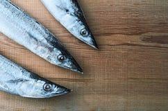 Scombrésoce Pacifique de poissons congelés sur un conseil en bois Images libres de droits