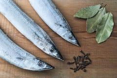 Scombrésoce Pacifique de poissons congelés sur un conseil en bois avec des épices Photographie stock libre de droits