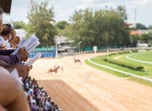 Scommessa del gioco di corsa di cavalli Fotografie Stock