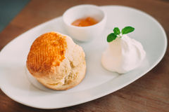 Scone with clotted cream and jam. A delicious scone with clotted cream and jam on white plate Royalty Free Stock Image