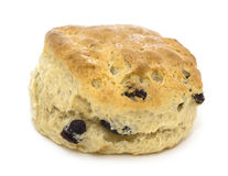 Scone de Rasin Images libres de droits