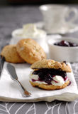 Scone with jam and cream. Buckwheat scone with clotted cream and chunky blueberry jam Royalty Free Stock Photos